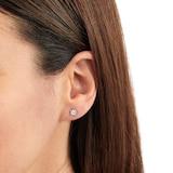 Goldsmiths 9ct White Gold 0.15 Carat Total Weight Diamond Multi Stone Stud Earrings