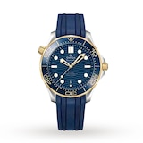 Seamaster Pro-Diver 300 Mens Watch