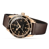 Omega Seamaster 300 Co-Axial Master Chronometer 41mm Bronze Gold