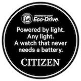 Citizen Pro Master Mens Watch
