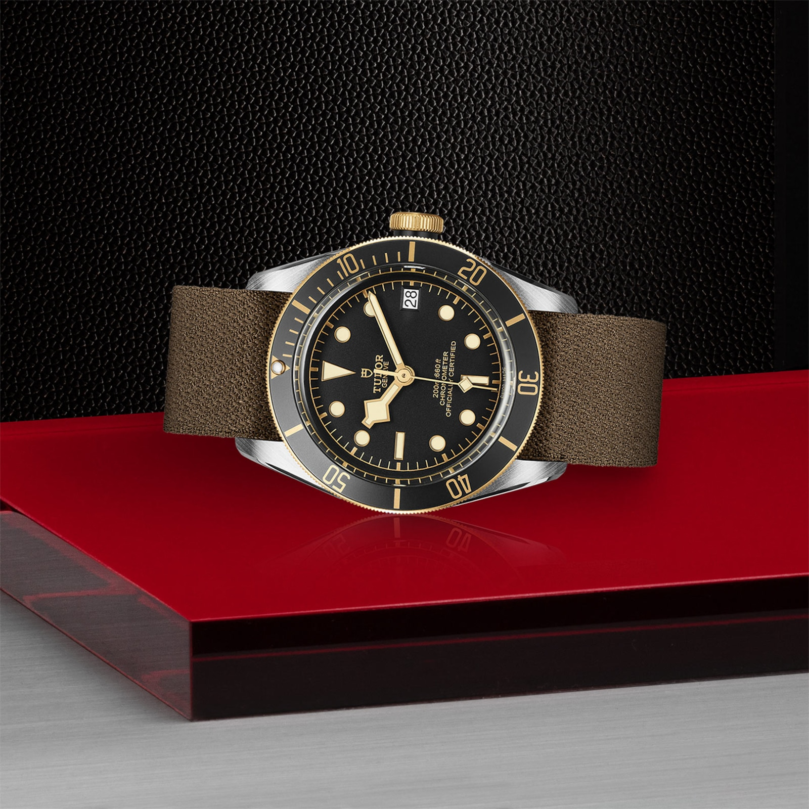 Tudor Black Bay S&G