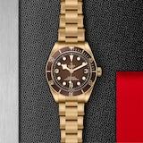 "Tudor ""Boutique Edition"" Black Bay Fifty-Eight Bronze"
