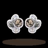 Ted Baker Lynda Stud Earrings