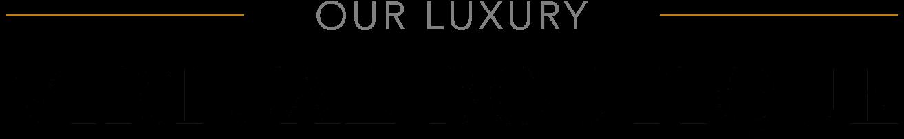 Luxury Virtual Boutique