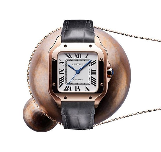 Cartier About Image