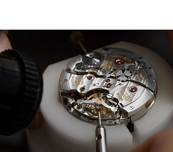 H.Moser & Cie About Image